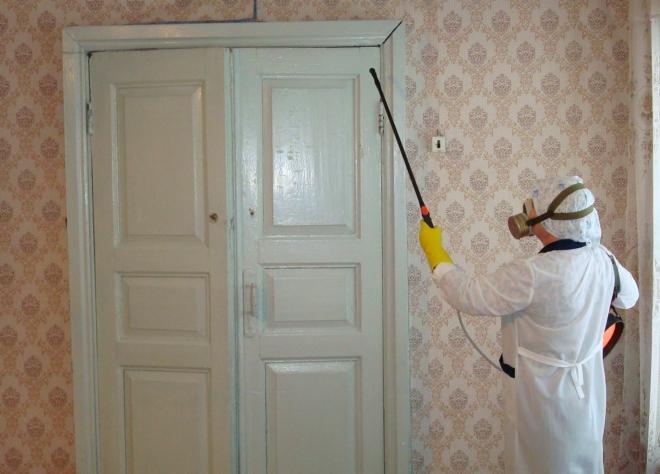 обработка дверного проема от тараканов