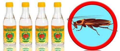 Боятся ли тараканы уксуса